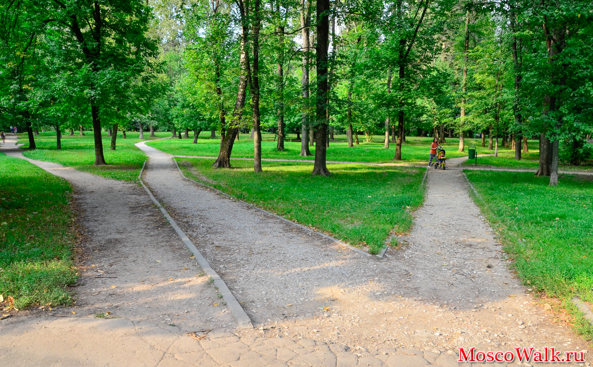 Grachevsky Park in Khovrino: a recreation area with an unusual history 14