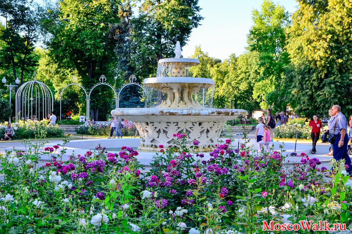 парк горького лето 2016 фото