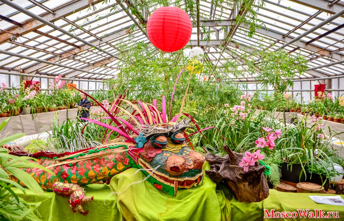 Альпика магазин при ботаническом саде москва комплект выбрать